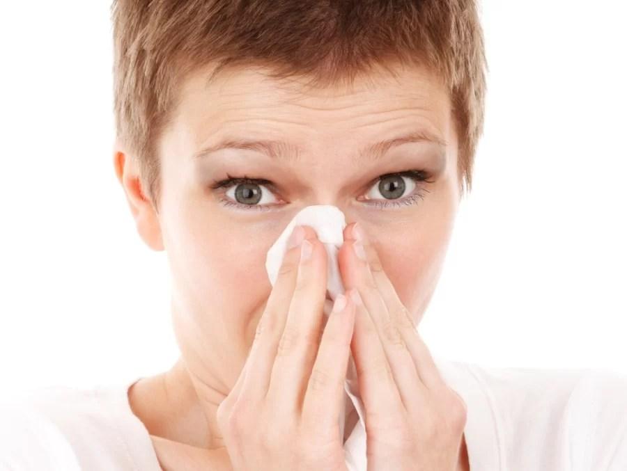 Pyłki, kurz i roztocza – jak zminimalizować efekty alergii Pyłki, kurz i roztocza – jak zminimalizować efekty alergii