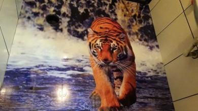 Photo of Transforme seu banheiro pequeno com porcelanato liquido!