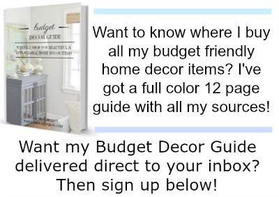opt-in-budget-decor-guide-2