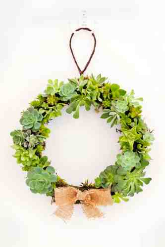How to Make a Christmas Wreath - 21 of the best Christmas Wreaths That You Can Make Yourself! This non traditional succulent wreath is perfection