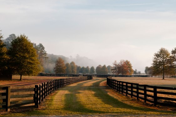 foxhall_selects_lo_res-117fallhorsetrlfence