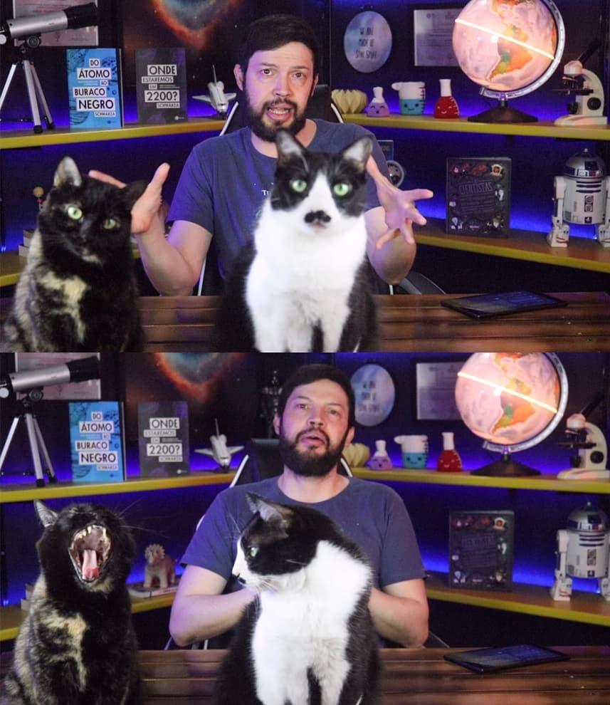 Divulgadores científicos do YouTube - Schwarza e seus gatos