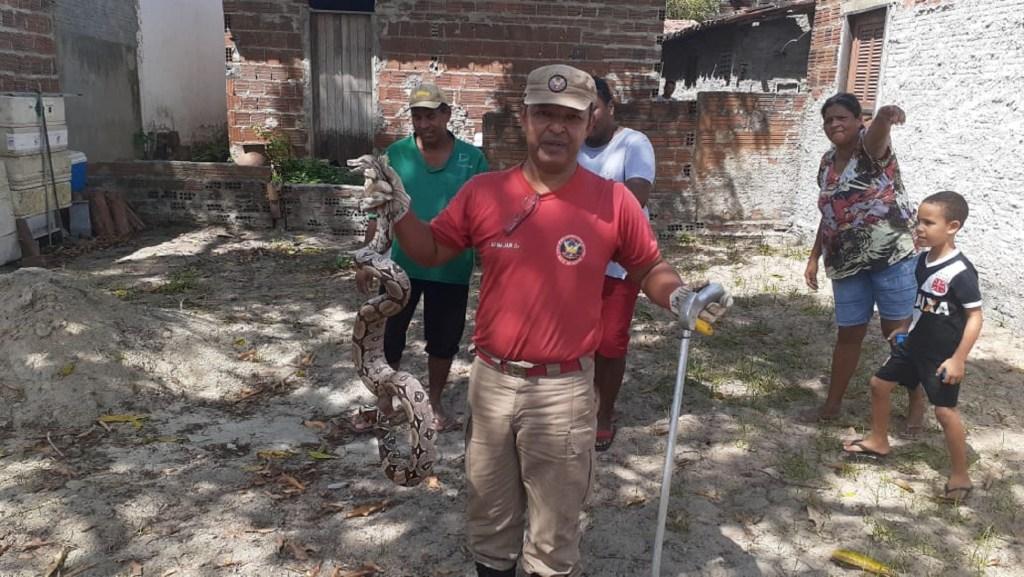 Corpo de Bombeiros Militar do Rio Grande do Norte resgate de serpentes