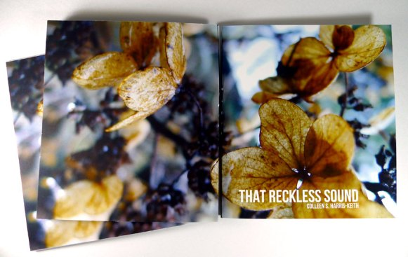That Reckless Sound, Colleen S. Harris-Keith
