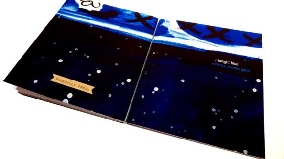 Midnight Blue by Vanessa Jimenez Gabb (cover art: Nicci Mechler)