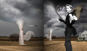 Ghost Tongue by Nicole Rollender (Cover art: Susan Yount)