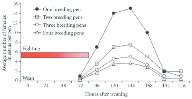 Figure 13. Estimated average number of females in estrus on each day when pen-
