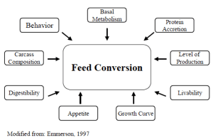Figure 1. Underlying component traits contributing to feed efficiency.