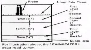LeanMeater