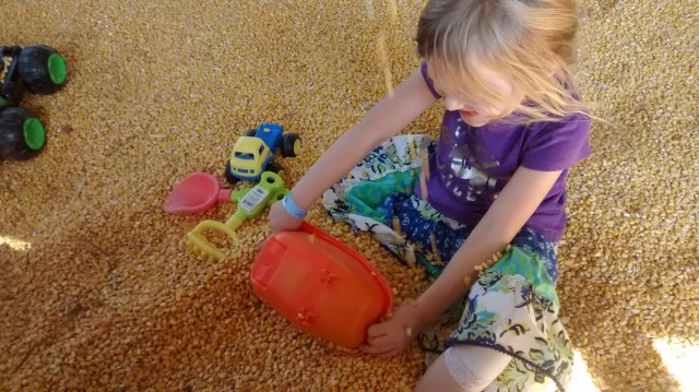 daughter in the corn pit (it's a Midwestern thing... I think?)
