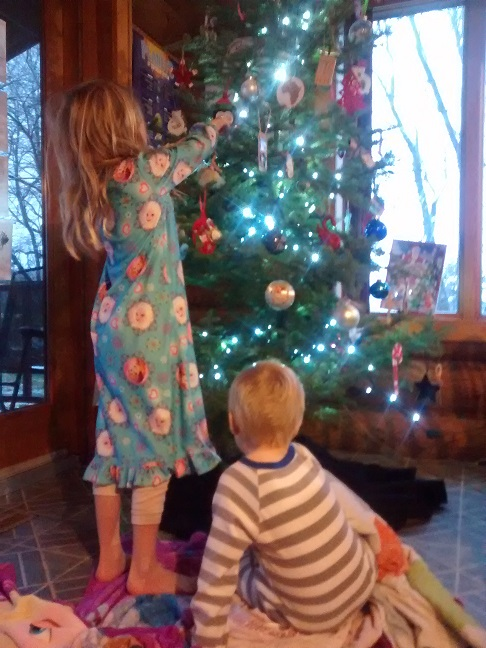 The next morning, after decorating the tree. These two like to play musical chairs with the ornaments.
