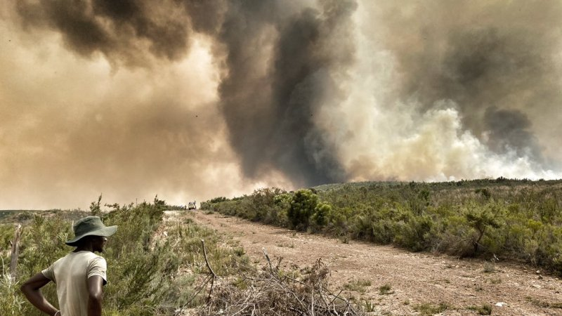 Over R300k crowdfunded in less than 24hrs after devastating wildfire destroys Lismore Winefarm.