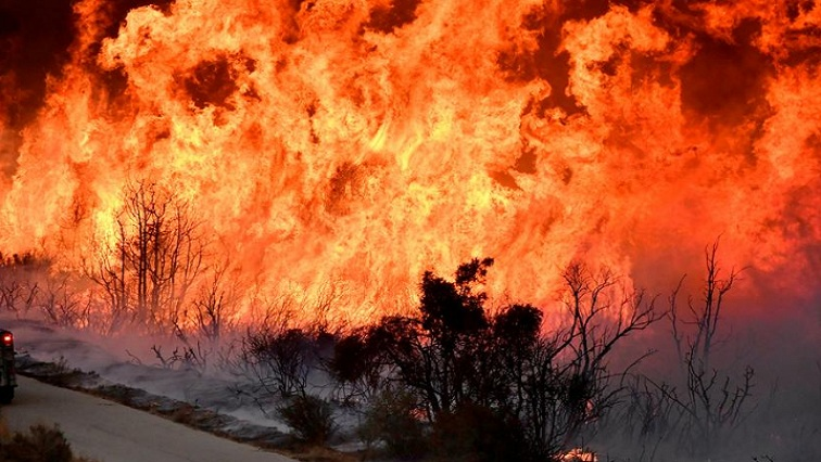 Funding pours in to support farmers after devastating widespread fires
