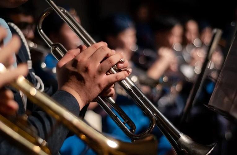 LOS INSTRUMENTOS MUSICALES Y EL SIGNO ZODIACAL.