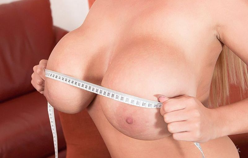 katie thornton - boob studies