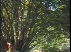 Caiu na net levando piroca no mato.