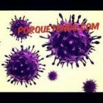 Porque Tengo Parásitos En El Ano | Síntomas Prevención y Remedios Caseros para Combatirlos