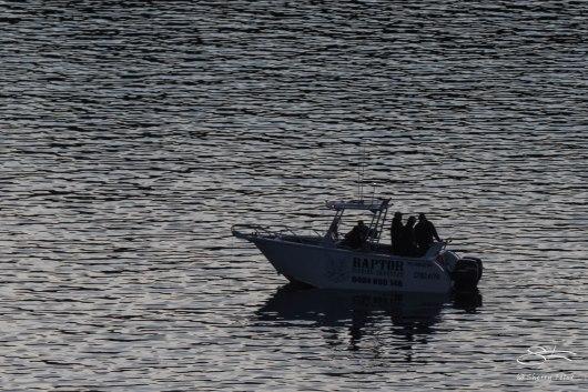 Fishing in Middle Harbor, Mosman