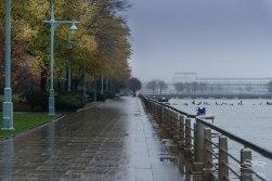 Rain on Hudson River Greenway