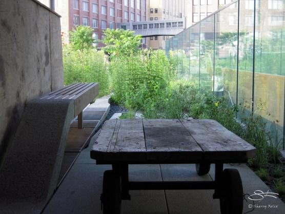2009-07-03 High Line 23