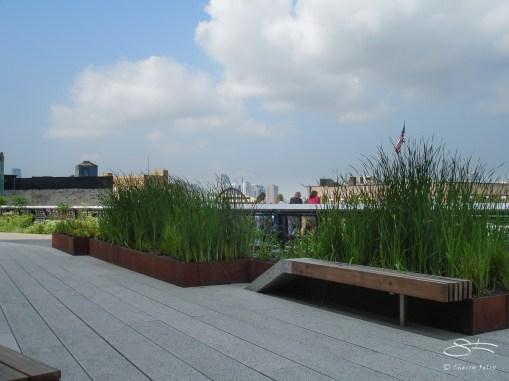 2009-08-03 High Line 06