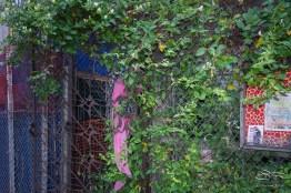 20110604 Le Petit Versailles 2 St B-C 157