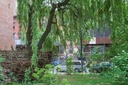 20110605 El Jardin Del Paraiso 94.NEF