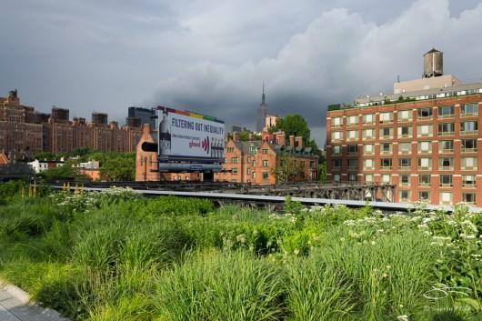2011-06-14 High Line 67