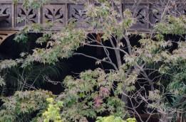 2012-10-10 High Line 19