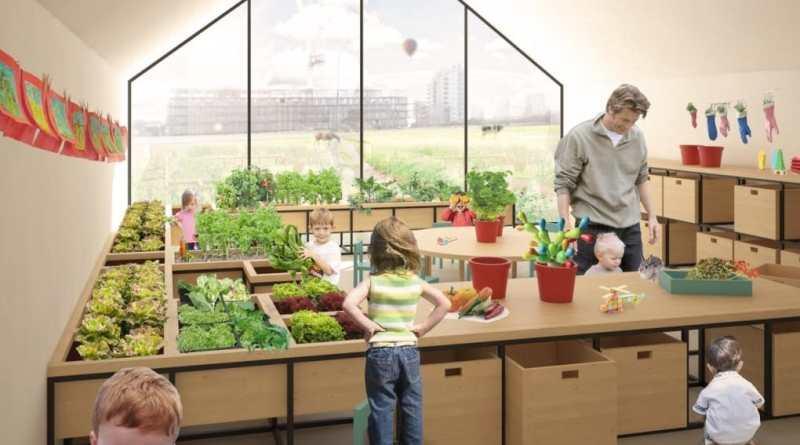 Agricultura en preescolar o cómo enseñar a los niños a cultivar sus propios alimentos
