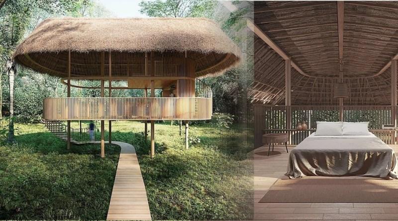 , Cabañas autosuficientes diseñadas para preservar y asegurar la conexión con la naturaleza.