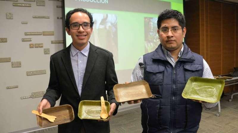 Crean platos hechos de hojas de plátano que se degradan en sólo 60 días