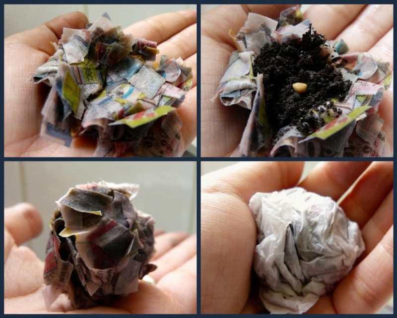 Cómo hacer bombas de semillas con periódicos. Incluye manual en PDF -