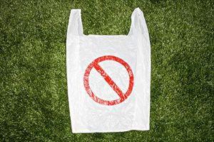 Día sin bolsas de plástico, el día mundial sin bolsas de plástico para decir adiós a los artículos desechables