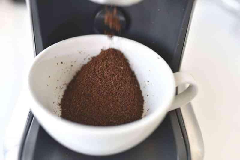 8 Maneras de usar Café en el jardín y la huerta - Eco Jardín Mágico