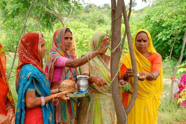Por cada niña que nace, mujeres hindúes plantan 111 árboles