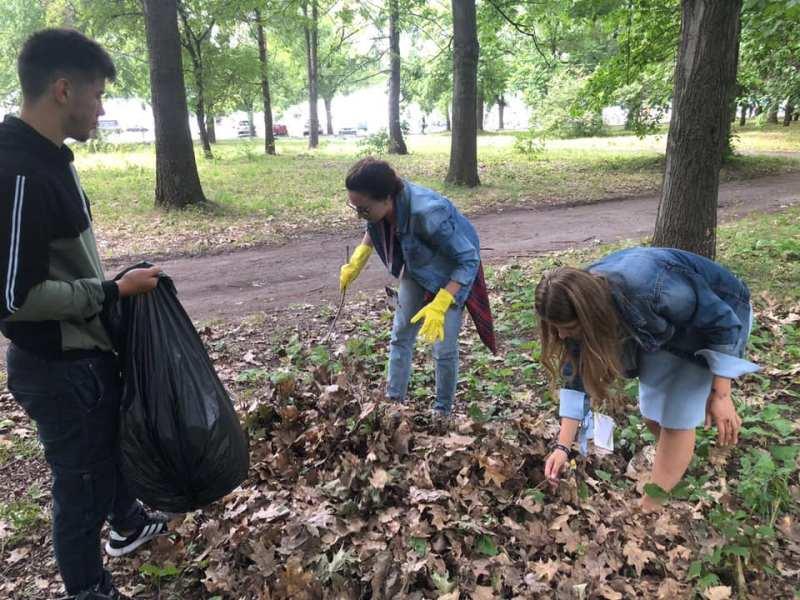 , Estudiantes transforman hojas caídas de los árboles en Papel, para terminar con la tala de bosques