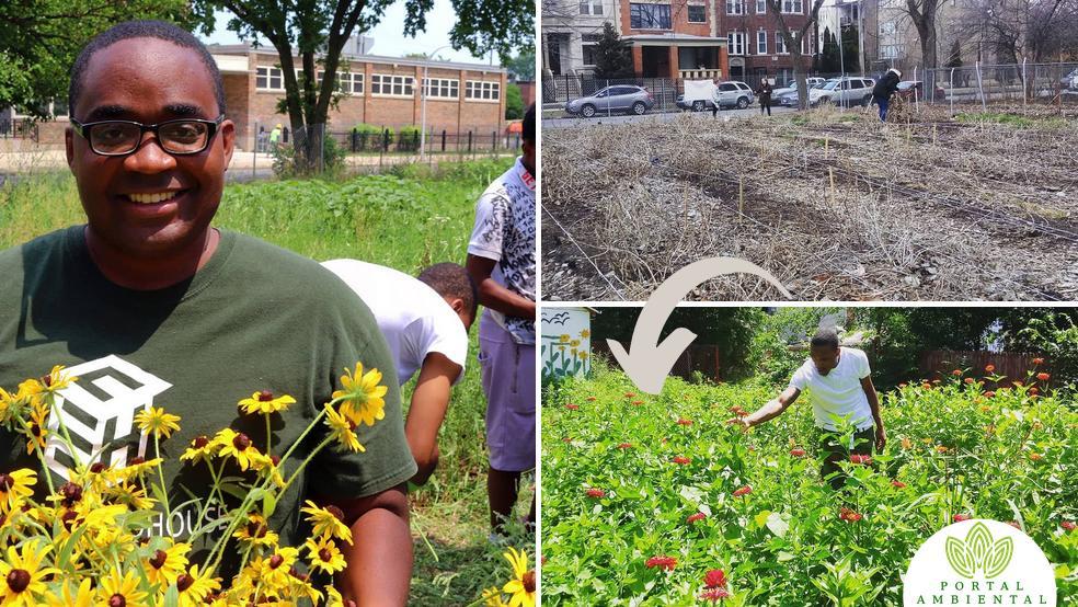 Florista convierte lotes baldíos en campos de flores para enseñar economía sostenible a jóvenes en riesgo