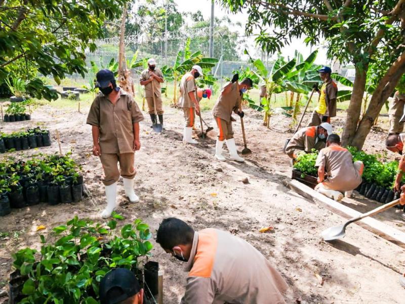 , En Colombia, la población carcelaria trabajará en restauración Ecológica