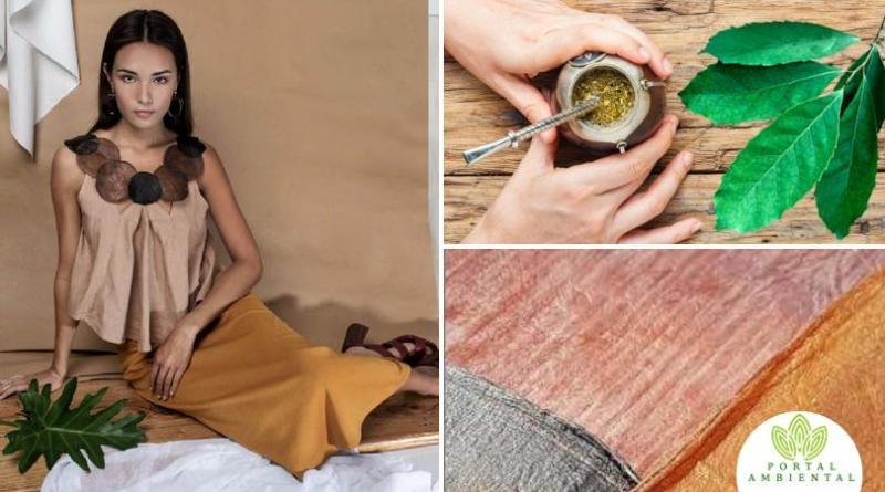 , Científica argentina desarrolló una tela ecológica hecha con hojas de Yerba mate
