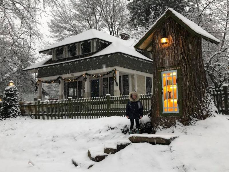 , Mujer transformó un árbol podrido de 110 años en una mágica biblioteca