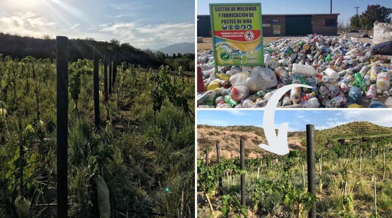 , Jovenes argentinos transforman toneladas de desechos plásticos en Postes para viñedos