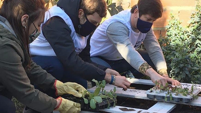 , En esta ciudad Argentina, han creado más de cien huertas comunitarias en espacios públicos y veredas