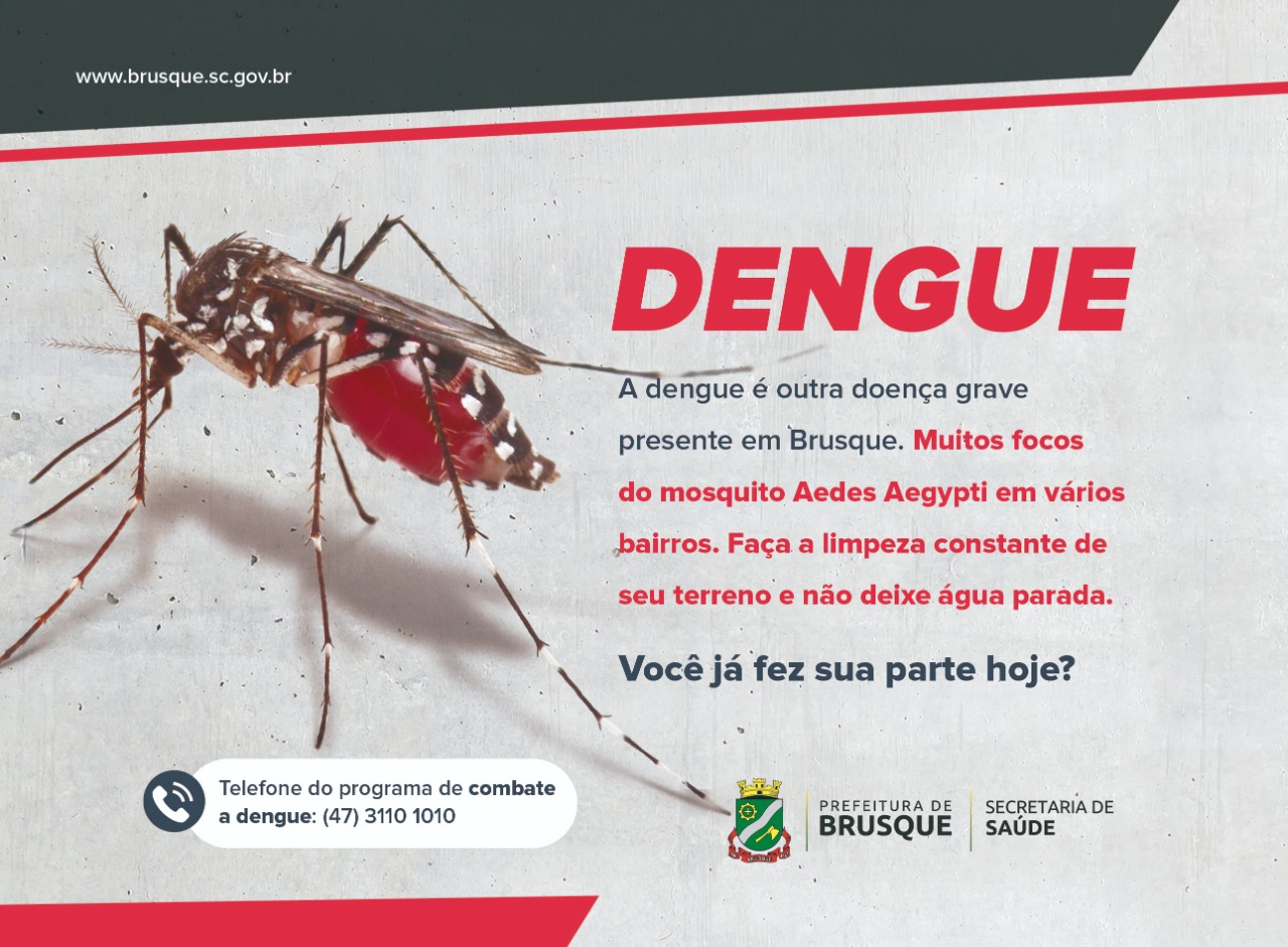 Brusque confirma novo caso autóctone de dengue