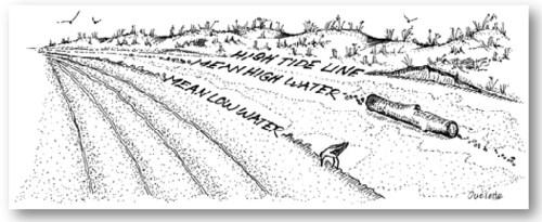 Public Trust sketch