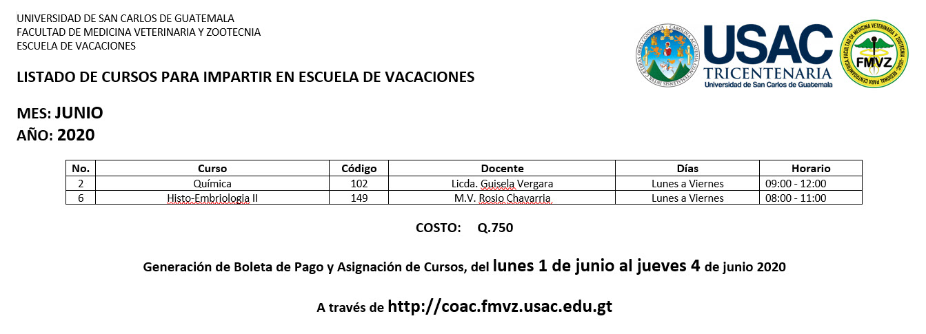 Escuela de Vacaciones junio 2020