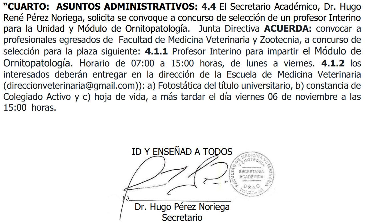 Convocatoria – Profesor Interino – Escuela de Medicina Veterinaria