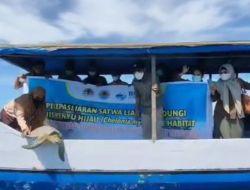 Penyu Hijau Dilepas BKSDA Sultra di Teluk Kendari