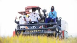 Kementan Perkuat Hilirisasi Pertanian di 14 Daerah, Sultra dapat 3 Kabupaten