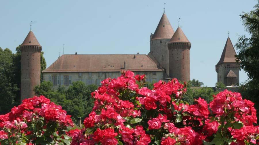 Festival des Roses